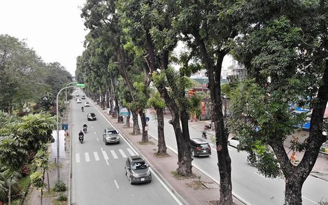 Ảnh: Đường Láng thay đổi bất ngờ, dân Thủ đô cứ ngỡ đang lạc vào đường phố Singapore