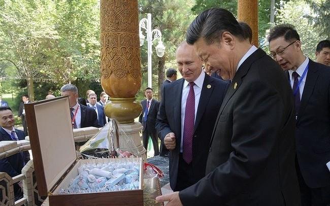 Chủ tịch Tập được Tổng thống Putin mời ăn kem mừng sinh nhật