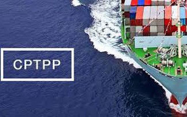 Chỉ định cơ quan đầu mối triển khai Hiệp định CPTPP