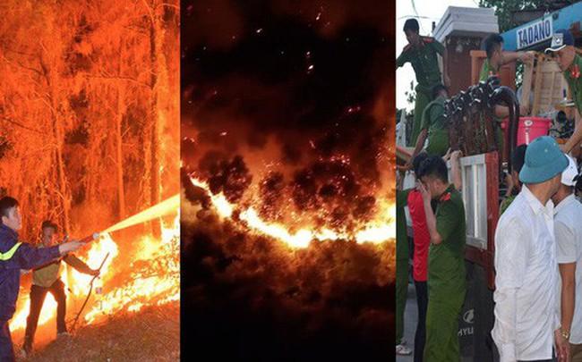 Toàn cảnh vụ cháy rừng thông lớn nhất Hà Tĩnh, di dời tài sản cả trăm hộ dân