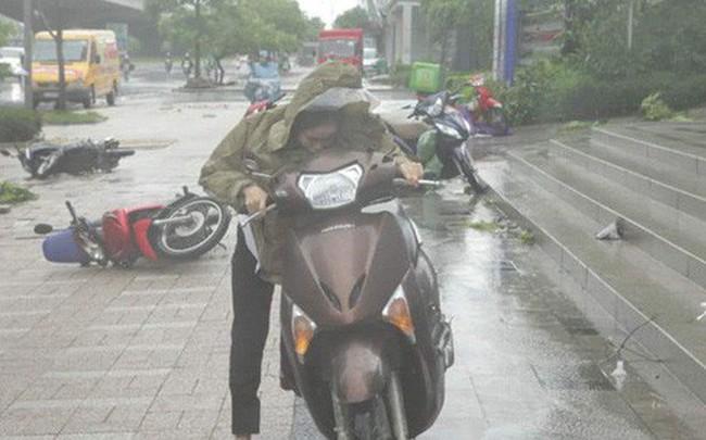 Trời Hà Nội đổ cơn giông cuối chiều, cây xanh bật gốc, xe máy đổ la liệt