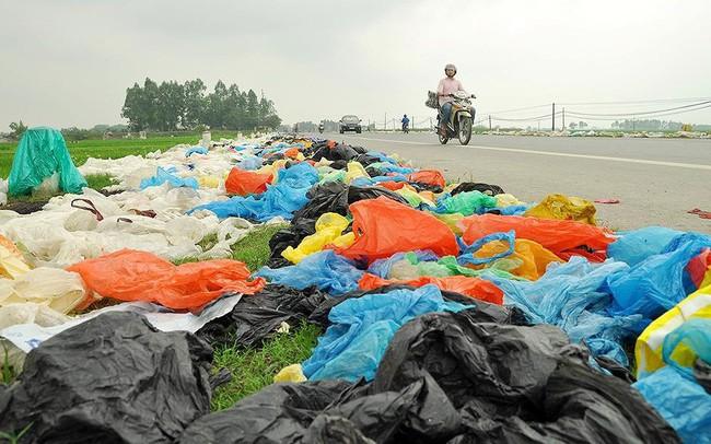 Thảm hoạ môi trường từ túi nilon, rác thải nhựa