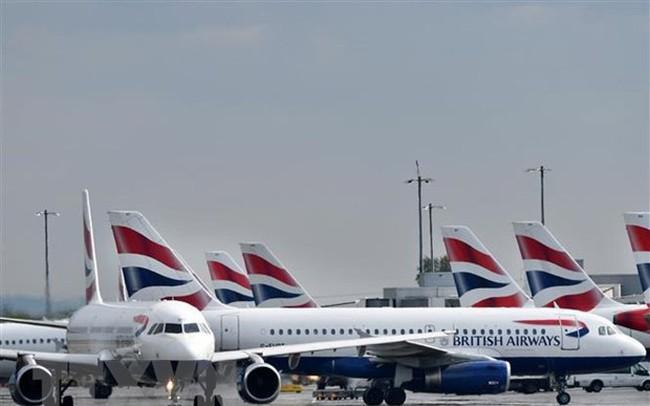 Một số hãng hàng không châu Âu bất ngờ đình chỉ bay tới Ai Cập - ảnh 1