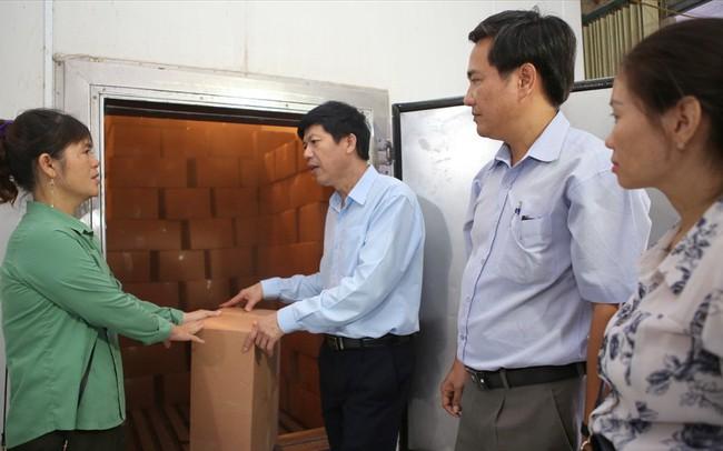 Vì sao hơn 1.000 tấn cá khô xuất khẩu ở Quảng Trị bị ùn ứ?