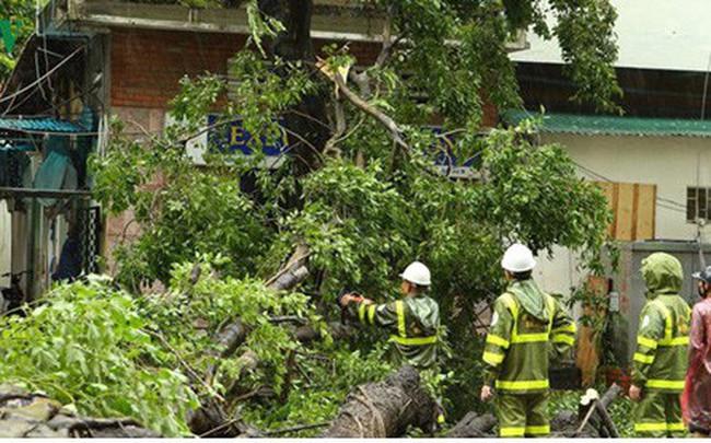 Công điện của Thủ tướng về ứng phó, khắc phục hậu quả mưa lũ do bão số 3