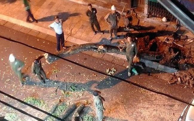 Lãnh đạo Công ty Công viên cây xanh Hà Nội nói gì về việc chặt hạ cây sưa trong đêm?