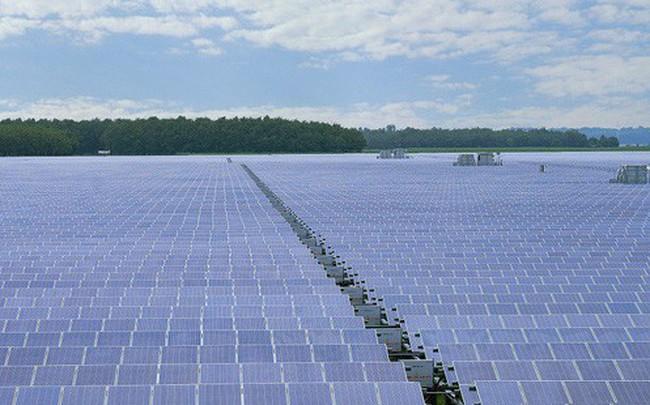 Có gì ở nhà máy điện mặt trời lớn nhất Đông Nam Á?