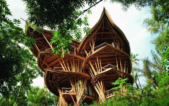 Ngỡ ngàng 'biệt thự tre' 6 tầng tuyệt đẹp giữa rừng