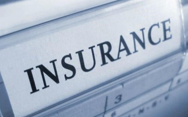Doanh thu phí bảo hiểm tăng trưởng mức cao - ảnh 1