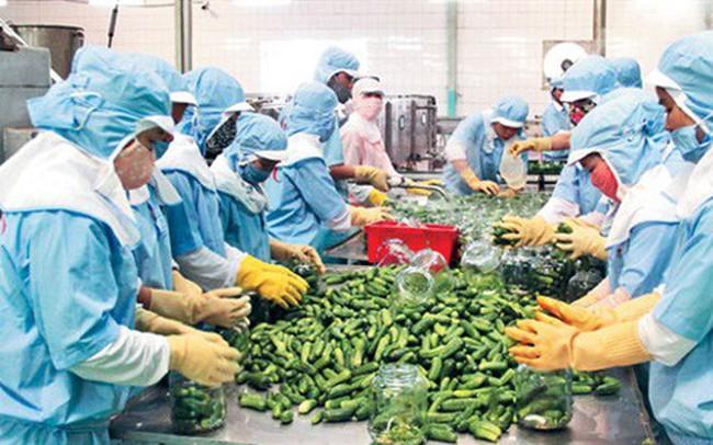 Không xuất khẩu sang Trung Quốc, nông sản Việt tiêu thụ ở đâu?