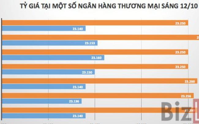 """Tỷ giá USD/VND tiếp tục chuỗi ngày """"bình lặng"""" - ảnh 1"""