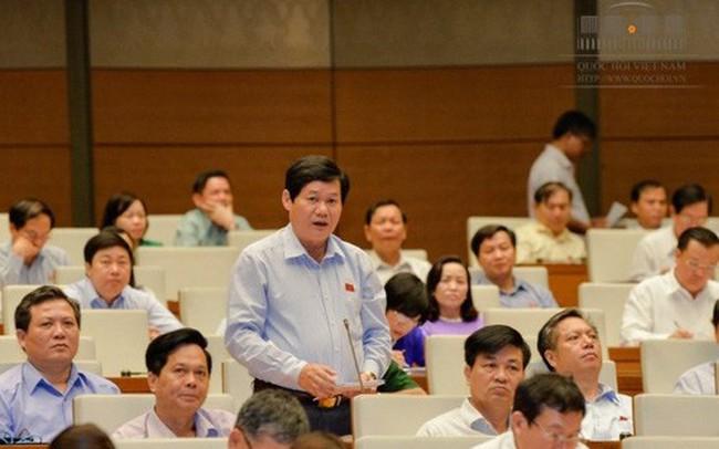 Đại biểu Lê Công Nhường: Ngư dân chậm trả nợ tác động lớn đến các ngân hàng - ảnh 1