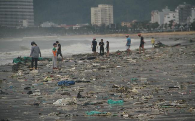 Sau bão số 5, cây cối đổ ngổn ngang, bãi biển Quy Nhơn ngập ngụa rác