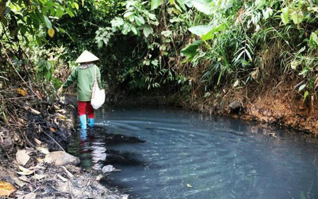 Phát hiện công ty nước sông Đà xả thải không phép ra suối