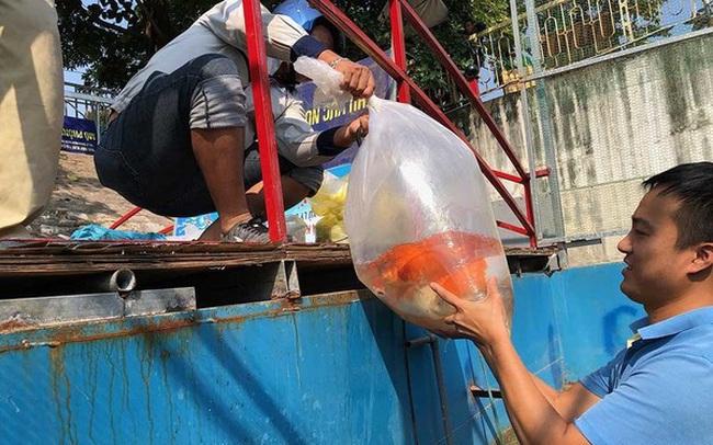 Cảnh dỡ 'bảo bối' Nhật làm sạch sông Tô Lịch, rút cá koi về hồ Tây