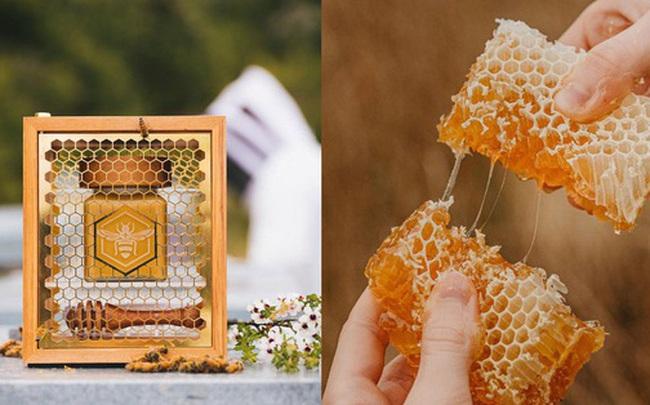 Có gì bên trong loại mật ong đắt tiền nhất thế giới khiến dân tình sẵn sàng chi tới nghìn đô để mua cho bằng được?