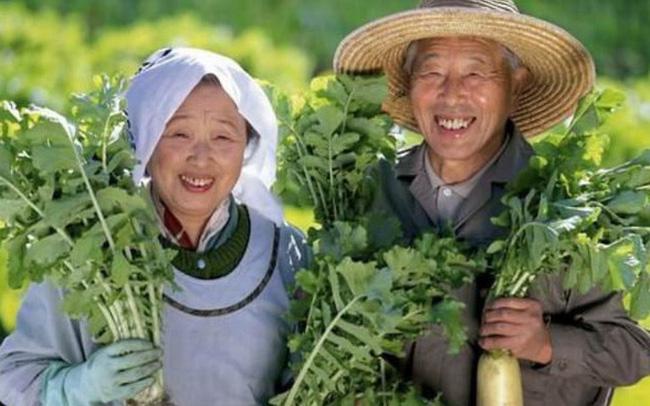 Người Nhật dựa vào đâu sống lâu nhất thế giới? 3 nguyên tắc cơ bản trong bữa tối là chìa khóa giúp họ thọ hơn ta 10 năm