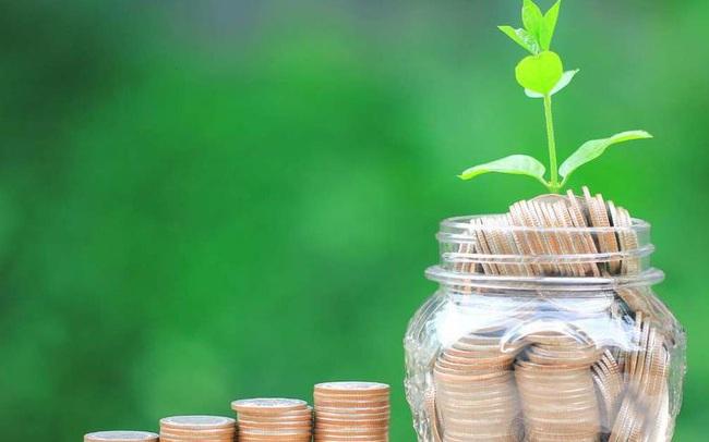 Bạn có bao nhiêu tiền nếu đều đặn đầu tư 500 USD mỗi tháng kể từ 2009 đến nay?