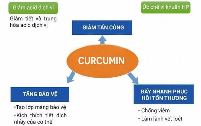 Tại sao nên sử dụng curcumin để tăng cường miễn dịch cho người bệnh dạ dày