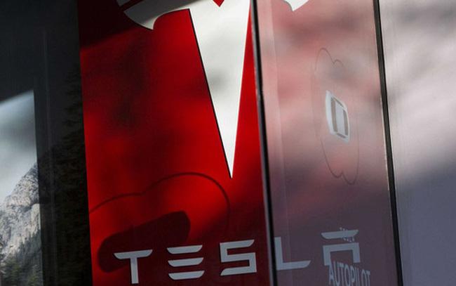 """Giới bán khống vẫn """"chơi lớn"""" với cổ phiếu Tesla, quy mô đã tới 14,5 tỷ USD"""