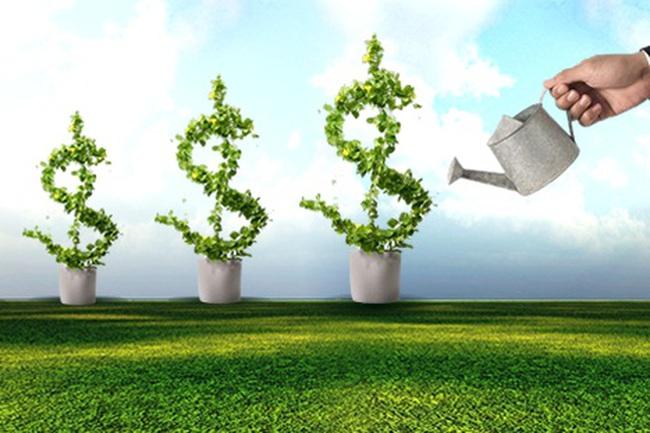 Từ 14/10: Quỹ mở của VCBF bắt đầu chào bán chứng chỉ quỹ