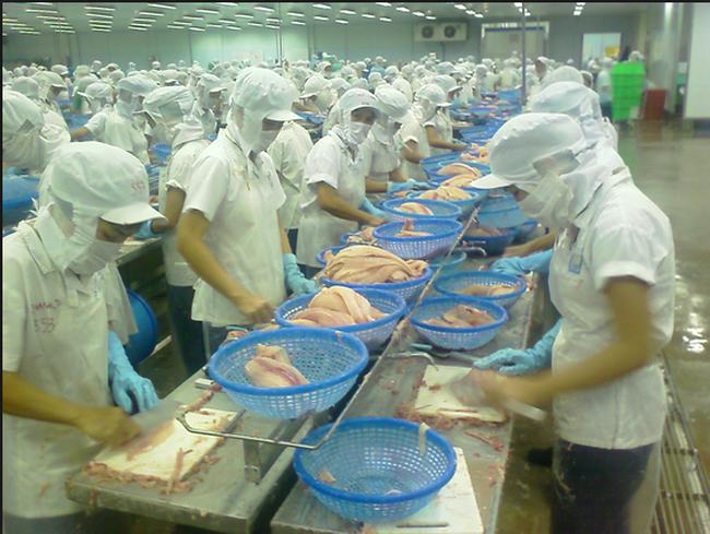 Thêm thuế suất nhập khẩu, tăng áp lực nguyên liệu lên Doanh nghiệp thủy sản