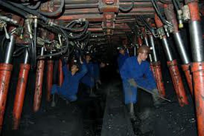 Than Hà Lầm: Lên kế hoạch 2014 giảm doanh thu và lợi nhuận, tăng lương nhân viên