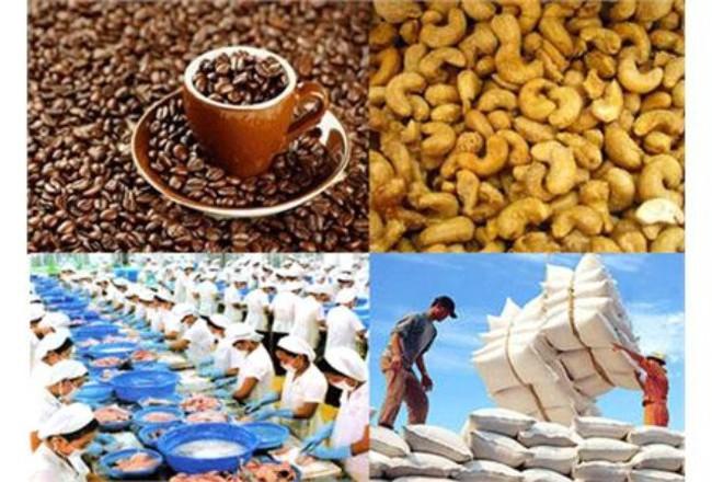 CK Thiên Việt: Xuất khẩu Việt Nam–một bức tranh tươi sáng phía trước