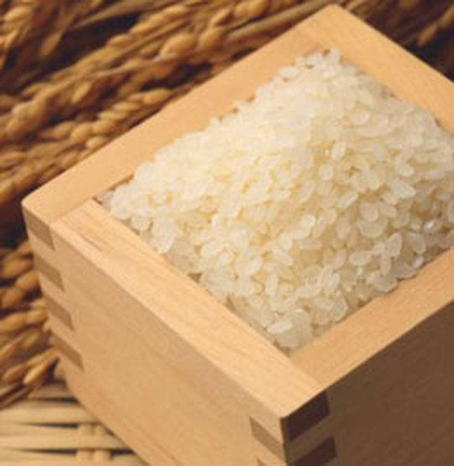 Thu mua 500 ngàn tấn gạo trong tháng 8