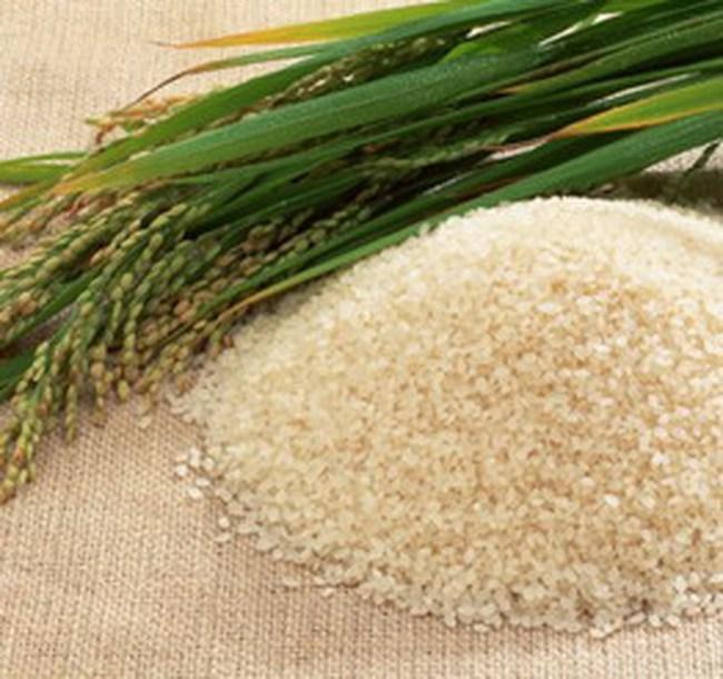 Mỗi ngày mua 10.000 tấn lúa trong dân