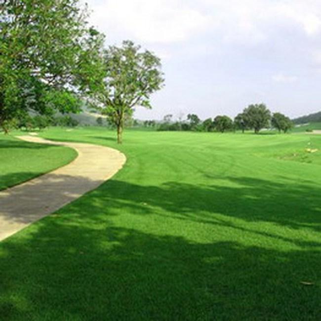Long An chỉ triển khai một dự án sân golf