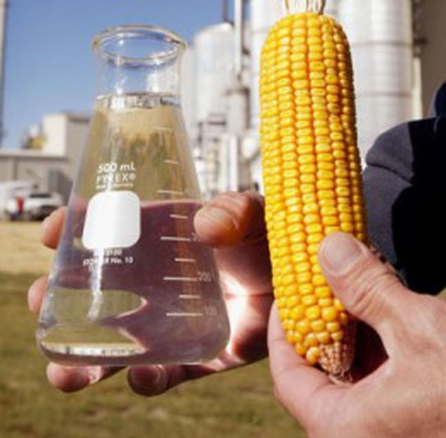 80 triệu USD xây nhà máy sản xuất Ethanol