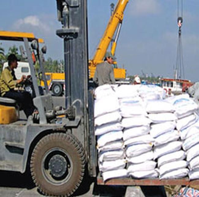 Dự báo giá gạo xuất khẩu