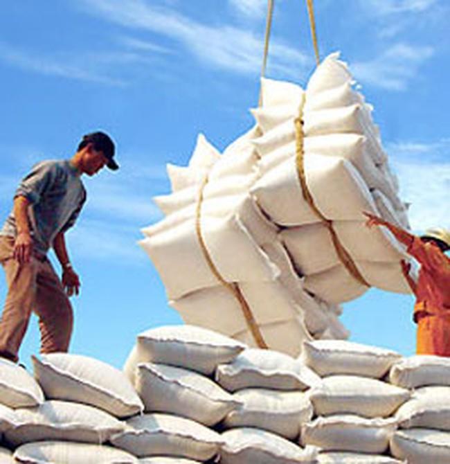 Đồng Tháp đẩy mạnh mua lúa gạo xuất khẩu