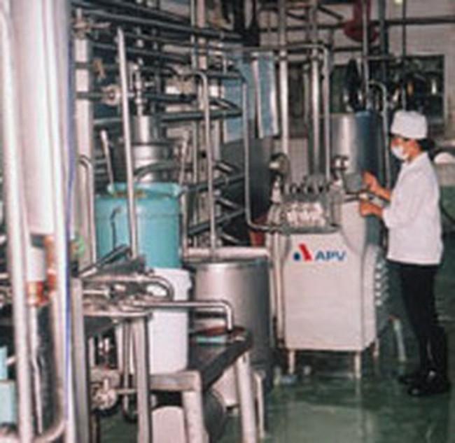 Mộc Châu thu mua sữa của nông dân Hà Nội
