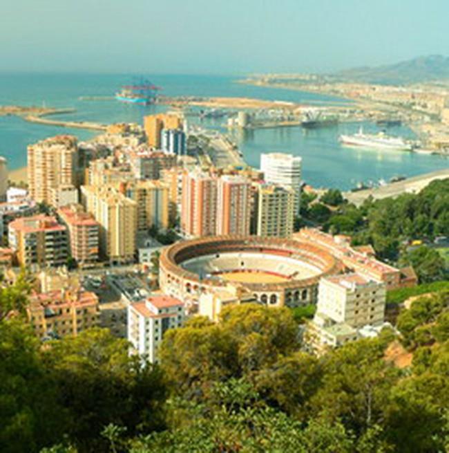 Cá tra, basa VN được đánh giá cao tại Tây Ban Nha