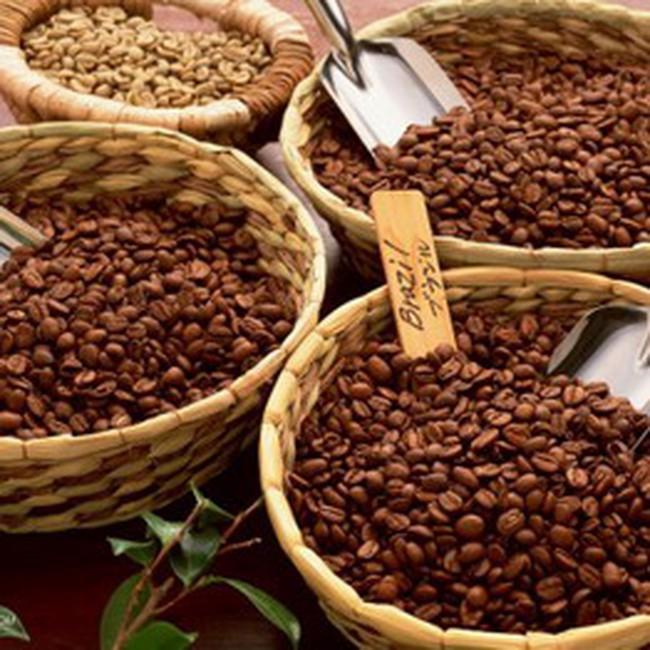 Cà phê, cao su vạ lây vì khủng hoảng tài chính