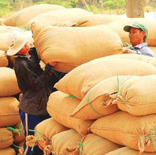 Bộ Công Thương đề nghị bỏ thuế xuất khẩu gạo