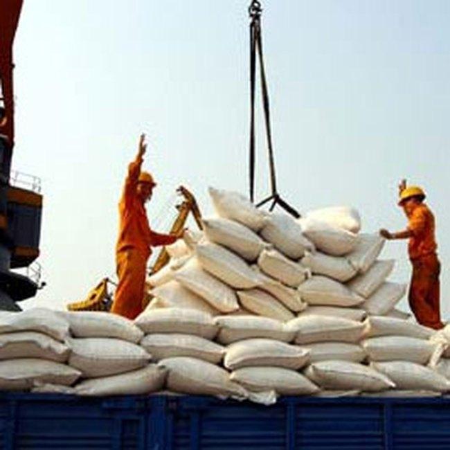 Xuất khẩu gạo gặp khó vì khủng hoảng tài chính