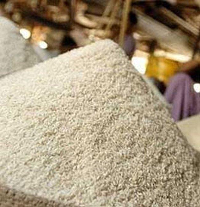 273 tỉ đồng xây nhà máy chế biến gạo tại Cần Thơ