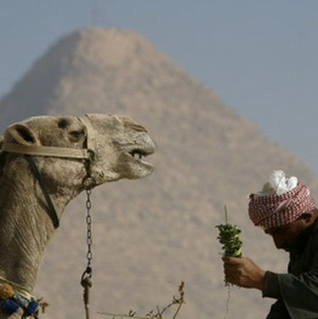 Trung Đông trong bão tài chính thế giới