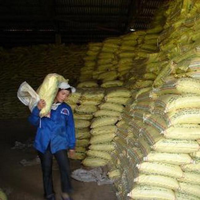Xuất khẩu nông, thuỷ sản có dấu hiệu suy giảm