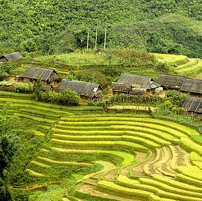 ADB viện trợ 2 triệu USD cho người dân tộc thiểu số Cờ Tu