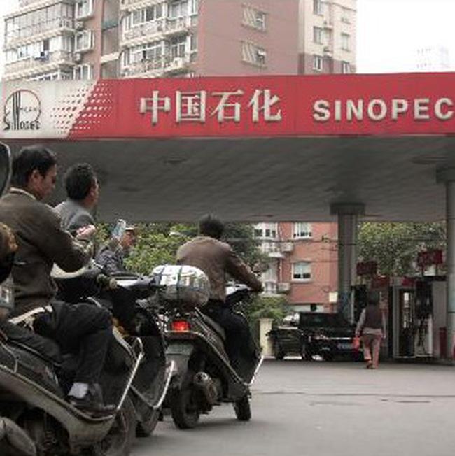 Năm 2009: Kinh tế Trung Quốc sẽ tăng trưởng 8%