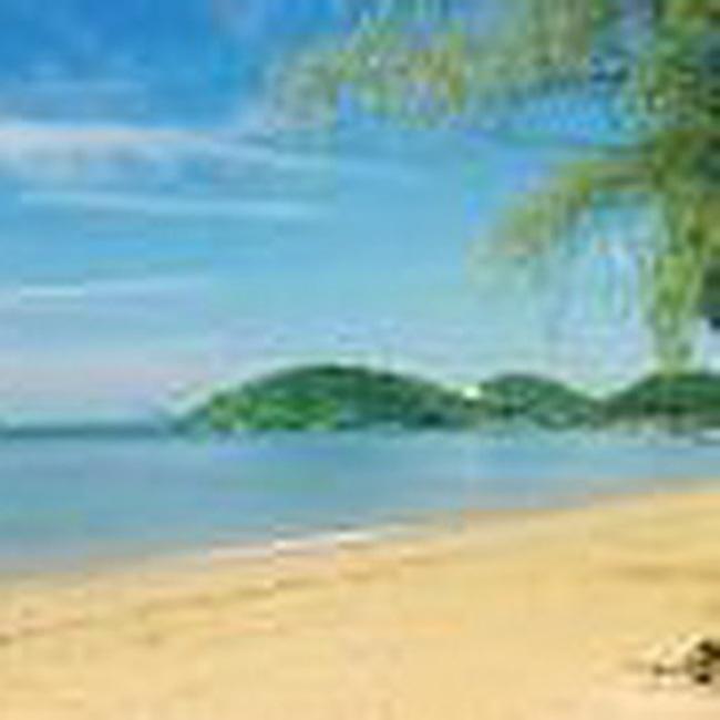 Bà Rịa – Vũng Tàu: Giá đất năm 2009 cao nhất 16 triệu đồng/m2