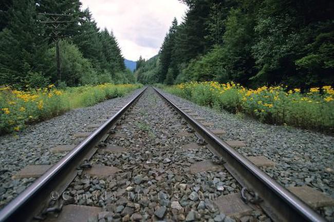 Công trình Đường sắt được chào bán 2,4 triệu cổ phiếu