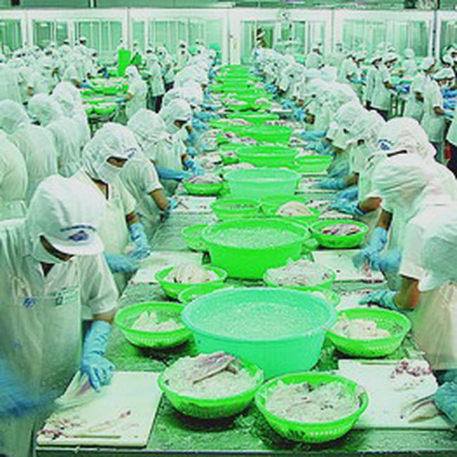 Việt Nam đứng thứ 8 về xuất khẩu thủy sản