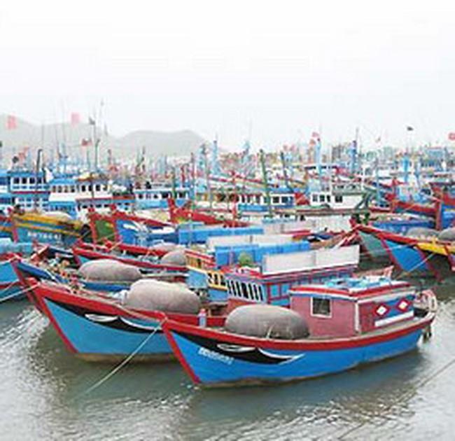 Bạc Liêu: Giá tôm sú và các loại hải sản tăng mạnh