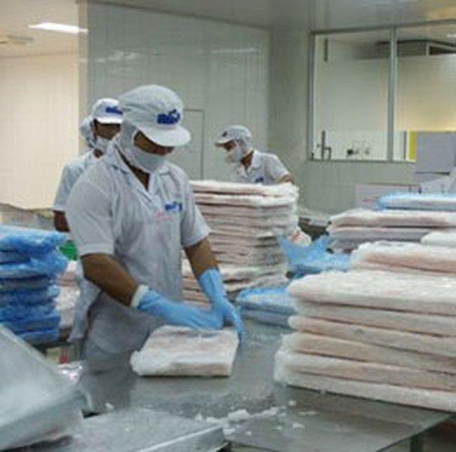Năm 2009 xuất khẩu cá tra dự kiến còn 1 tỷ USD