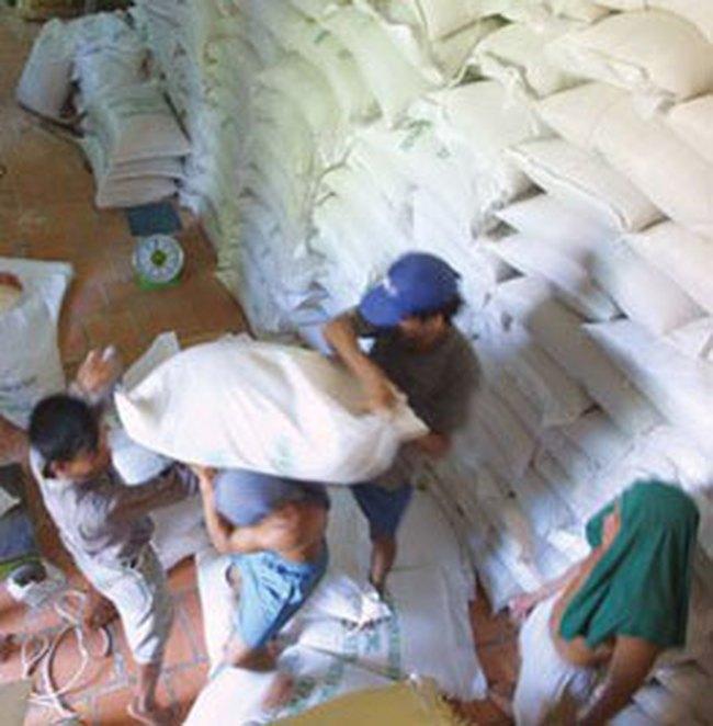 Tắc hơn 53.000 tấn gạo